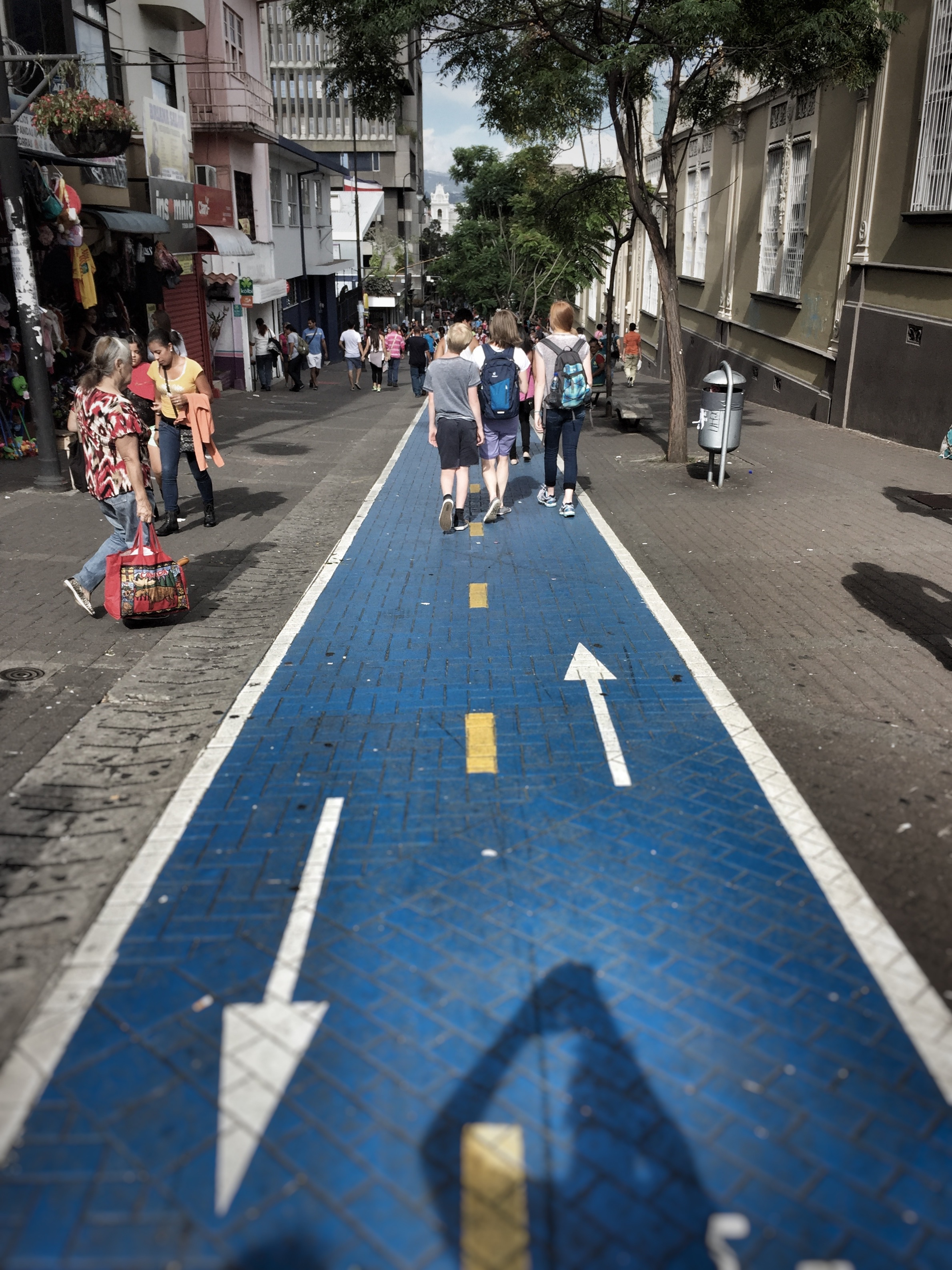 Blue bike lanes? Are they nuts?