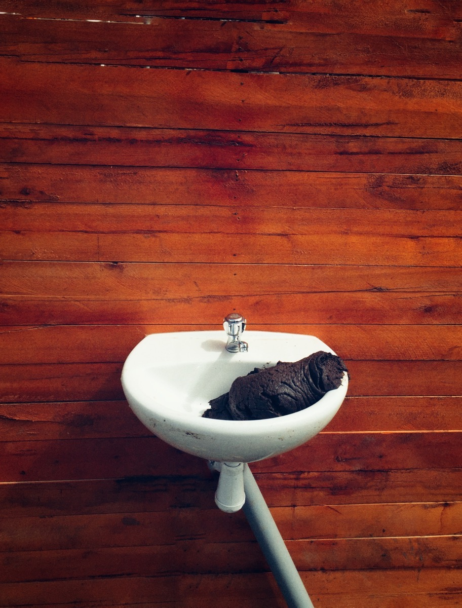 On a free-standing wall, cow poop in a sink. Because Art?...